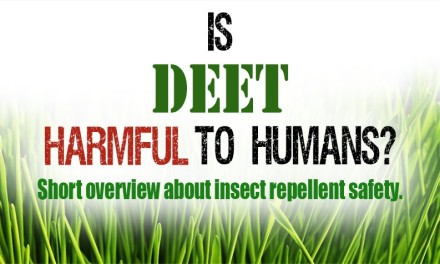 Is DEET harmful to humans?