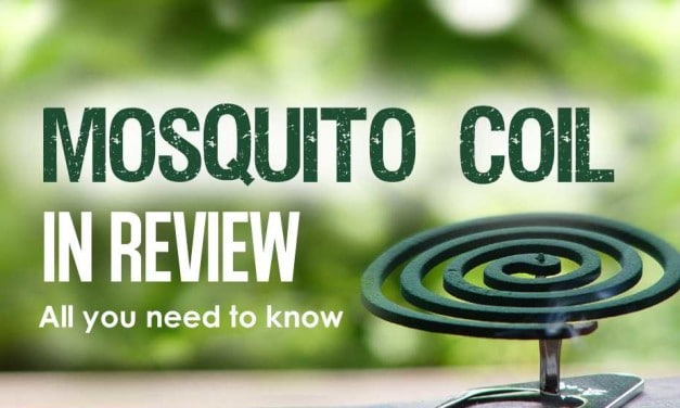 Mosquito Coil in Review