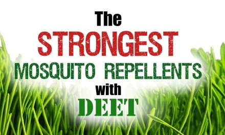 Strongest mosquito repellents with DEET