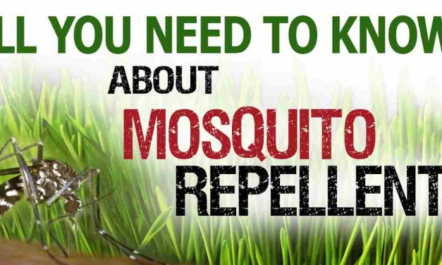 The Best Mosquito Repellent: Ultimate Guide