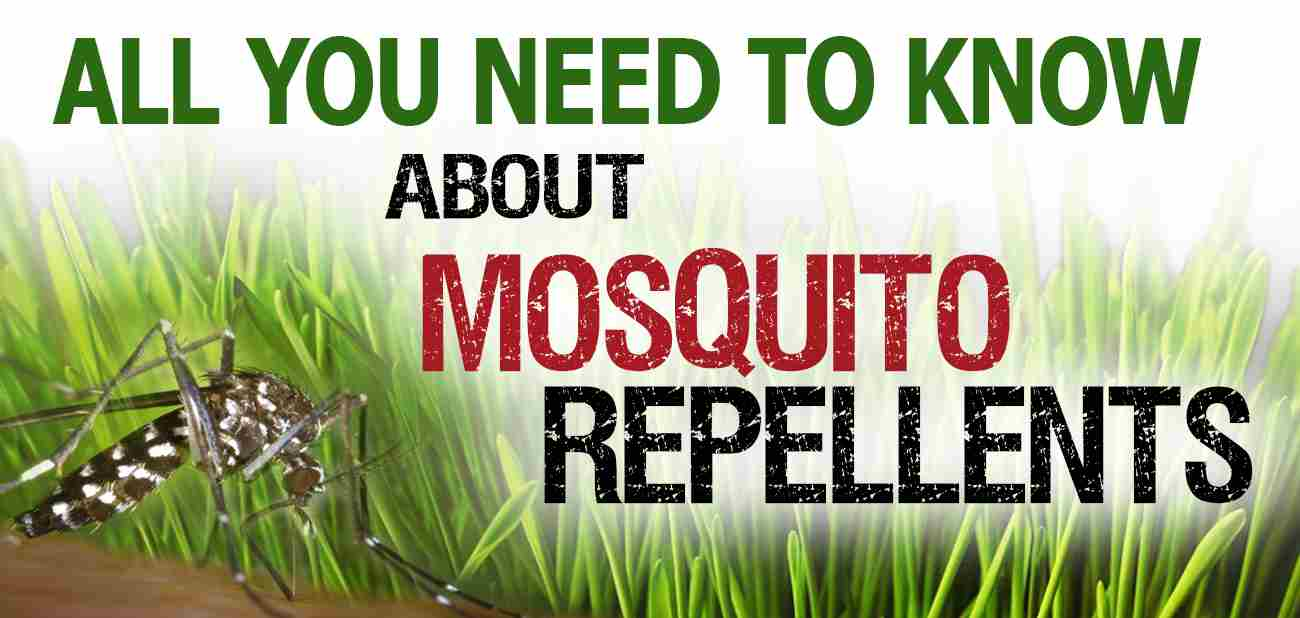 The Best Mosquito Repellent Ultimate Guide Mosquitofixes
