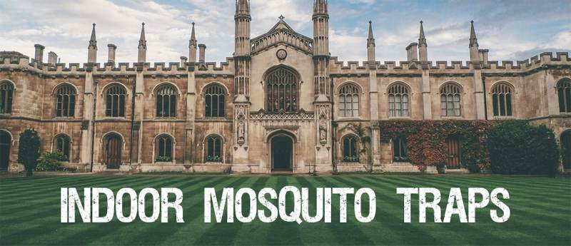 Mosquito traps for indoor use