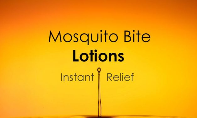 5 Mosquito Bite Lotions That Instantly Stop Itchy Bites