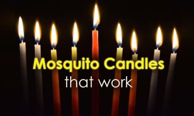 Mosquito Candles That Work