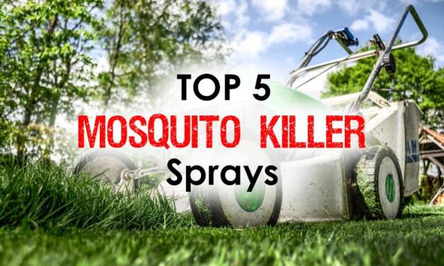 Mosquito Killer Sprays: Discover the Top 5 Life Safers for Immediate Results