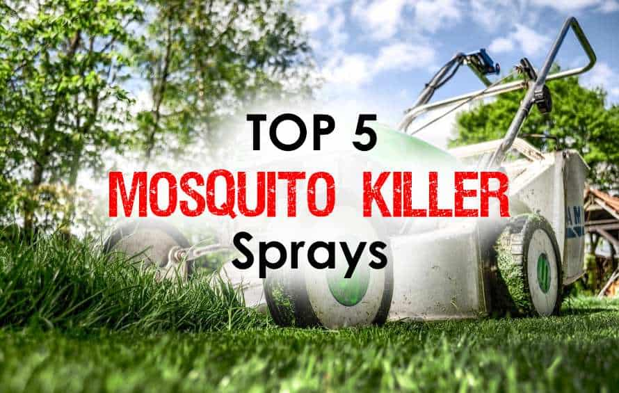 Mosquito Sprays Discover The Top 5 Life Safers For Immediate Results Mosquitofi