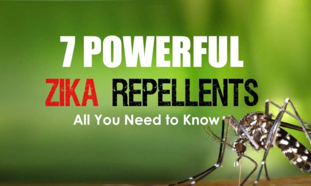 7 Powerful Repellents that prevent Zika